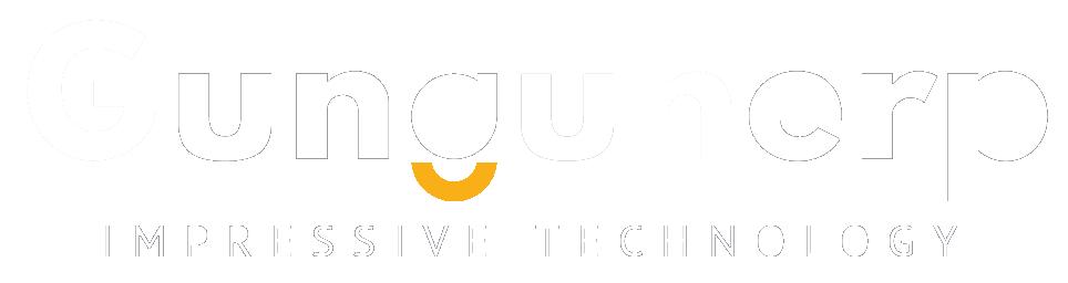 Gungun ERP Solution Pvt Ltd